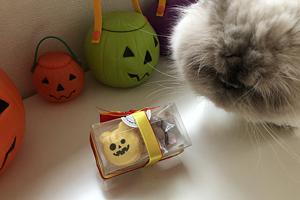 Halloween お菓子